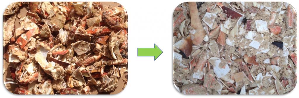 kraby po pouziti bioprocesora